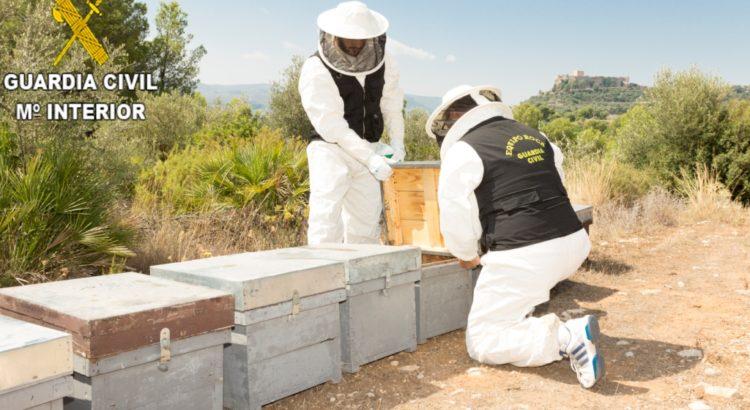 La Guardia Civil procede contra dos personas por el envenenamiento aproximado de 16.000.000 de abejas