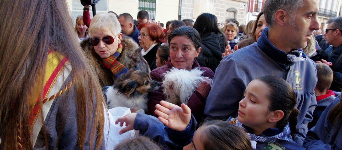 Sant Antoni 2018: Benedicció d'animals