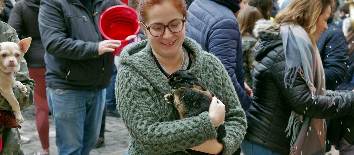 Sant Antoni 2020: Benedicció d'animals